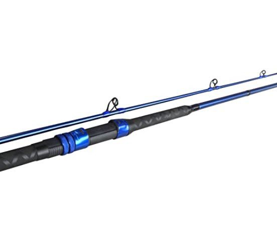 best beginner rods - option 2