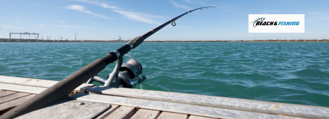 fishing rods for beginners - Header