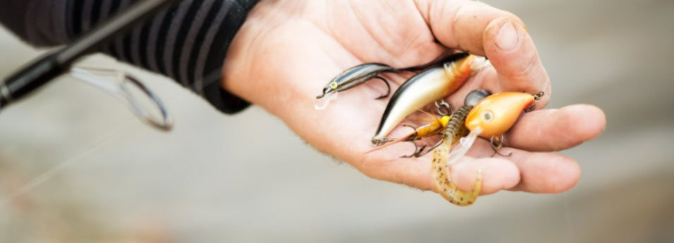 live bait vs lures - lures