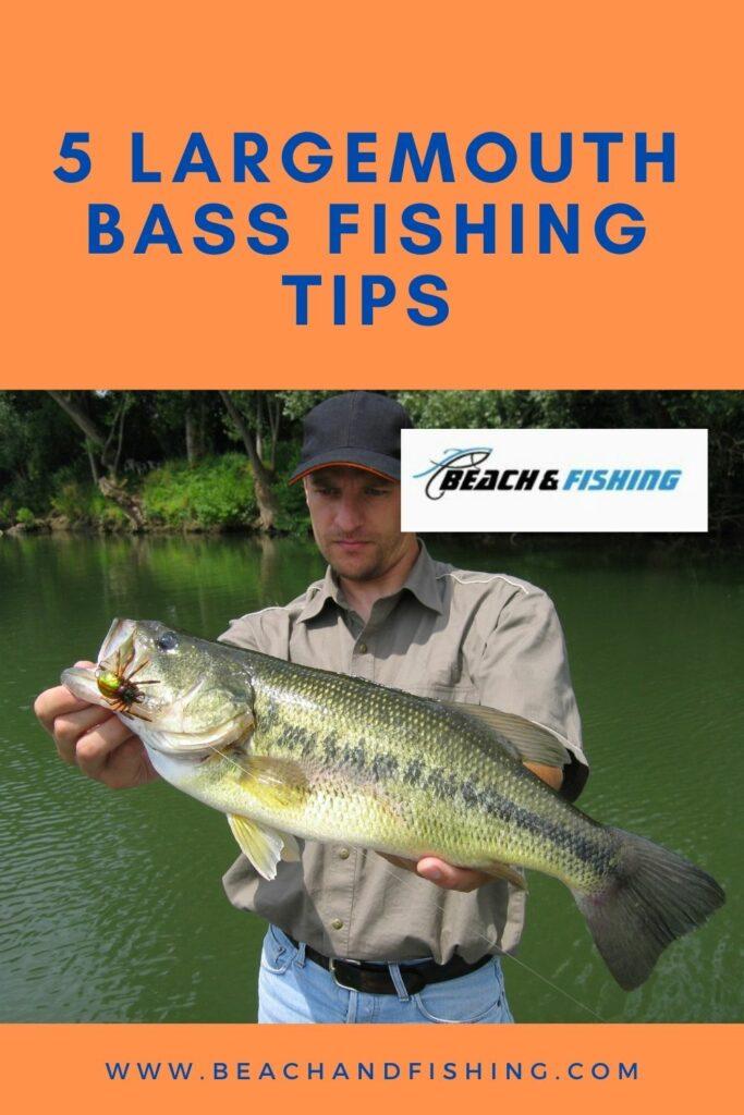5 Largemouth fishing tips - pinterest