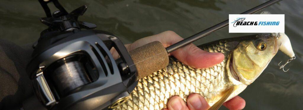 Baitcaster combos for bass fishing - header