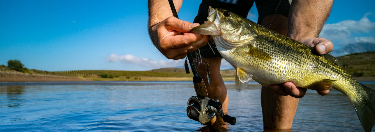 baitcaster reels for bass fishing - Baitcaster reel and bass