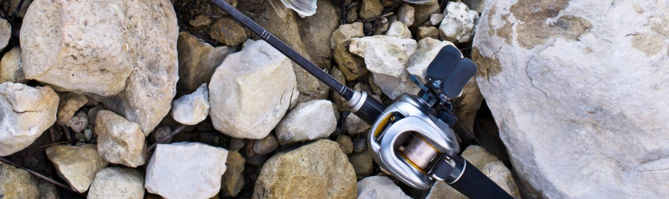 spinning reels for bass fishing - baitcaster reel