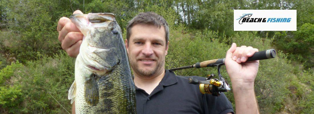 spinning reels for bass fishing - header
