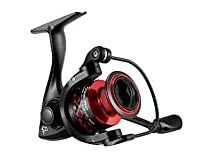 spinning reels for bass fishing - option 1