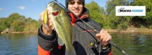 spinning rods for bass fishing - header