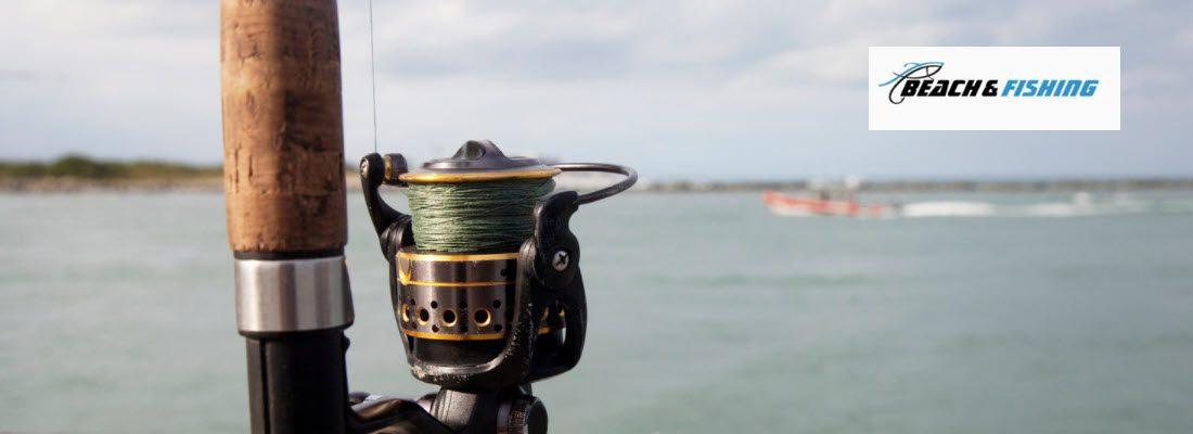 Best braid Fishing Line Options for Bass - Header