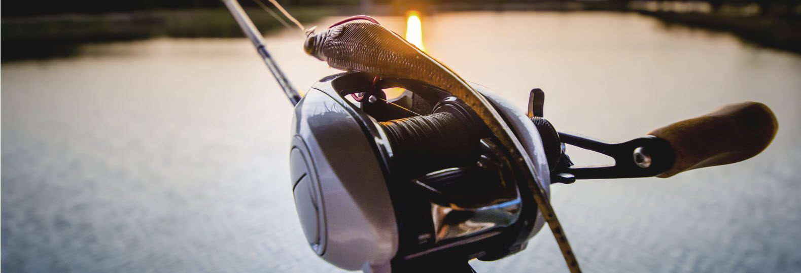 high end baitcasting reels for bass - baitcaster with lure