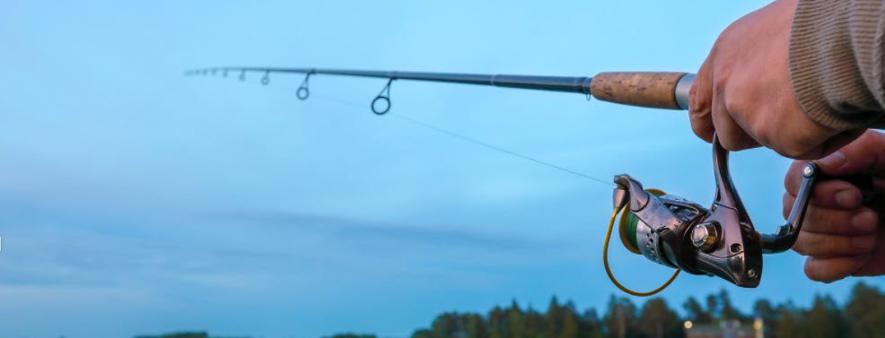 spinning rod and reel combos for bass fishing - Spinning reel