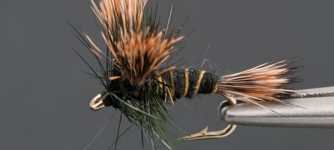 fly fishing tips for smallmouth bass - bass fly