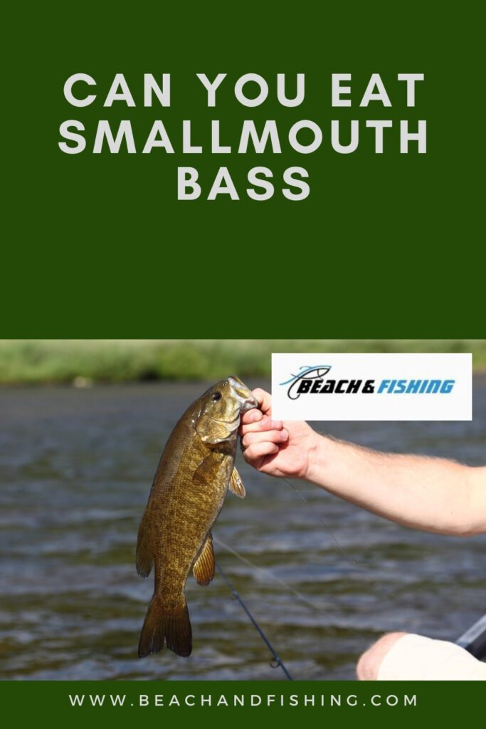 Can You Eat Smallmouth Bass
